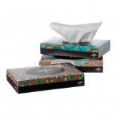 MEDLINE Standard Facial Tissues 200 BX / CS